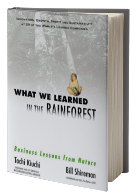 What We Learned in the Rainforest: Business Lessons from Nature