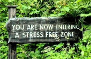 Stress Less!