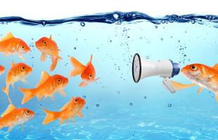 3 Key Elements to Lead Change in 2016