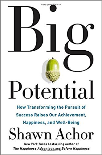 Big Potential: How Transforming the Pursuit of Success Raises Our Achievement, Happiness, and Well-Bein