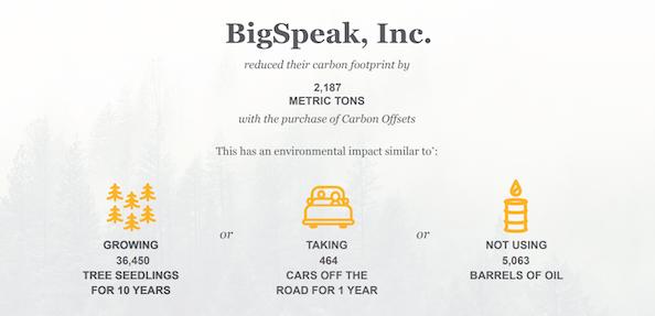 BigSpeak carbon offset stats 2020
